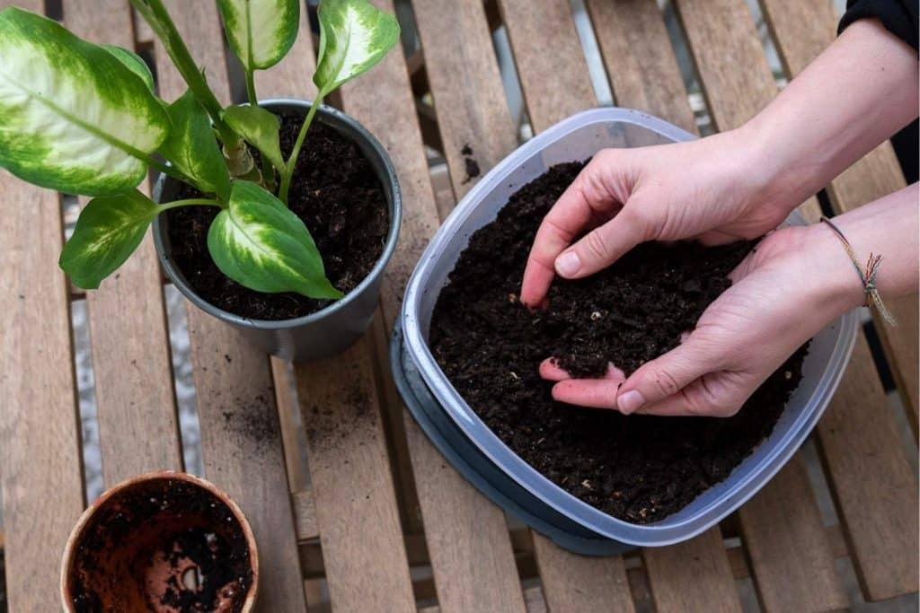 Compost 100% naturel et fait-maison grâce au lombricomposteur en bois design de natuco